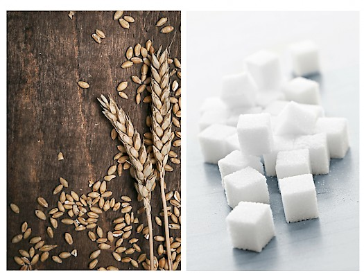 wheat & sugar