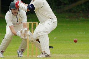 cricket-2