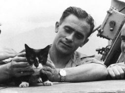 maritime cats-2