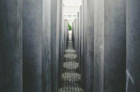 narrow path-2