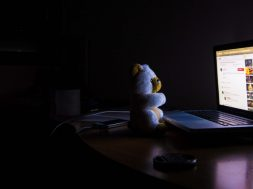 bear-and-computer-at-night.jpg