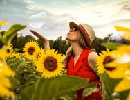 sunflower-field-2.jpg