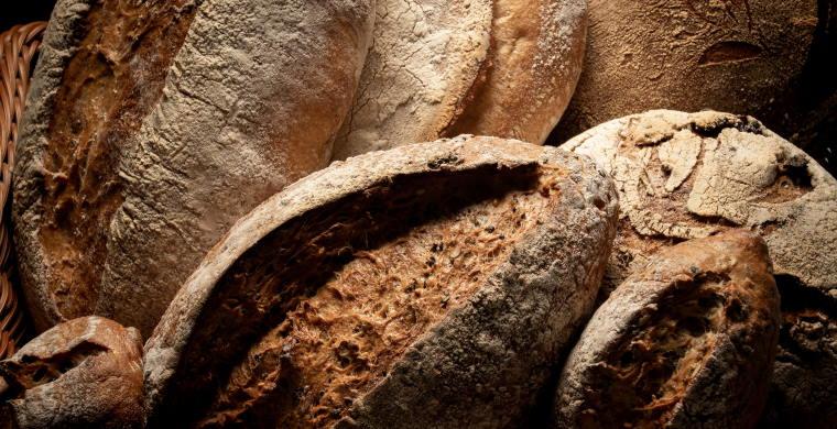 loaves of rustic looking bread