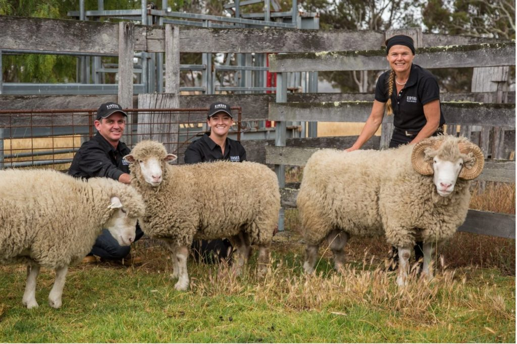 Source: Rams Facebook, the team from Kirsko Film Animals Pty Ltd with lead ram, Locke, and ewes Suzie, Charlie and Mel.